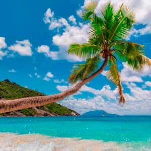 Оффшор на Сейшельских островах